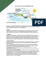 ACCION GEOLOGICA DE LAS AGUAS SUPERFICIALES.docx