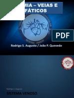 Anatomia das veias e da via linfática