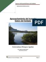 Aprovechamiento Del Humedal Estero Del Soldado