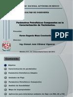 Pres tesis.pdf
