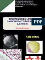 6. interacción CHO-lipidos durante el ejercicio final 2 sem 2014