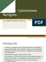 tumores lipomatosos