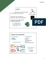 98304_aminoacidos2014IQ (2).pdf