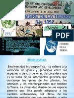 Expo Educ Amb Principios Rio92.Ppt [Autoguardado]