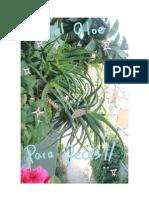 Algunas Propiedades Aloe Para Peces