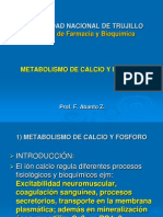 Bq i Faz Metabolismo+Del+Calcio
