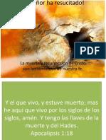 La Resurreccion 20 Abr 2014