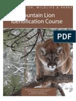 11-13-09MountainLionEducationAndIdentification