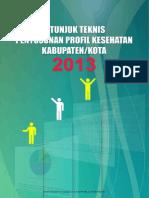 Juknis Profil Kab 2013