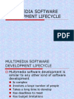 Multimedia Software Development Lifecycle
