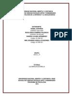 Producto Final Dofa Modelo Ecologico Conflicto Grupo 401511 77