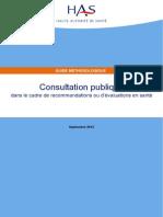 11igm02 Consultation Publique Guide Methodologique v2 2012-10!18!14!16!44 998