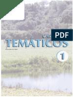 Cadernos temático, 1a séie, volume 1