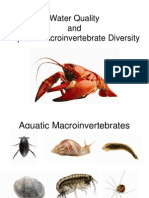 Lab 10 - Water Quality and Macroinvertebrate Diversity