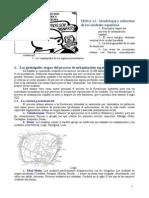 21 Morfología y estructura de las ciudades