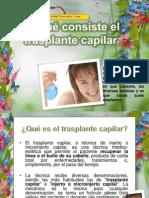En qué Consiste el Trasplante Capilar