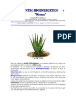 Aloe-Vera.pdf