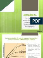 6.3 bioquimica