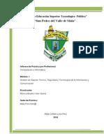 Modelo de Informe de Practica