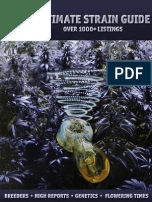 Ultimate Strain Guide CANNABIS | Cannabis (Drug) | Nature