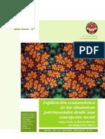 Dialnet-ExplicacionContametricaDeLasDinamicasPatrimoniales-4175414