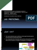 Las Prote�nas-1