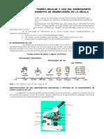 Autoinstructivo 2. Teoria Celular y Microscopio