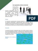 Estructura organizativa vertical y horizontal.docx