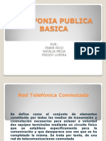 Telefonia Publica Basica
