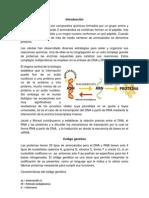 notas - copia.docx