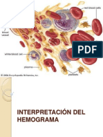 Clase 9 Interpretación Del Hemograma