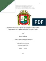 I-TESIS ENFERMEDADES FUNGOSAS ILLPA Y CAMACANI 15 SET 13.docx