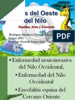 Exposición VON (Reptiles, Aves, Zoonosis).Ppt