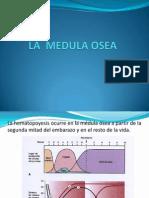 Clase 06 Aspiracion Biopsia Mielograma