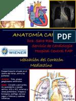 Anatomia de Cavidades y Valvulas