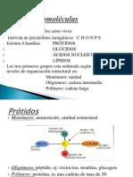 Biomolculas y Células II