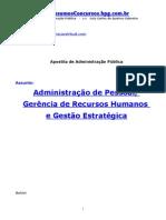 Adm Publica LuizQueiroz