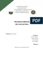 Procesos Hibridos