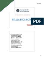 Clase 10 Célula Eucariota