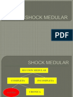 Shock Medular (1)