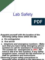 Safety Summary