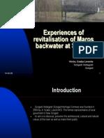 Csaba Voros -Revitalisation of Maros Backwater