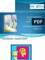 CT Head Anatomy & Pathology