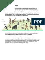 Trainingstechnieken Bij Primaten