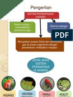 Sistem Pernafasan Haiwan