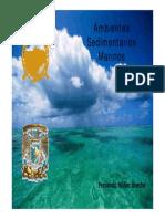 Ambientes sedimentarios marinos