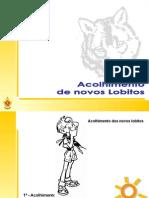 cerimonial_acolhimento_lobitos