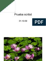 Prueba Scribd Ppt