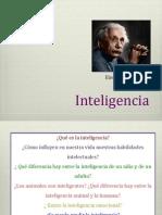 INTELIGENCIA.DPF
