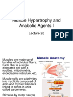 Muscle Fibers for Growth Potential